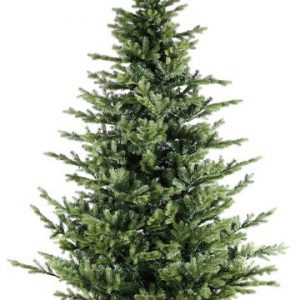 We have Grand Noble Trees in Stock!