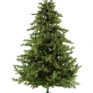 Christmas Trees All shapes, Styles, & Sizes!